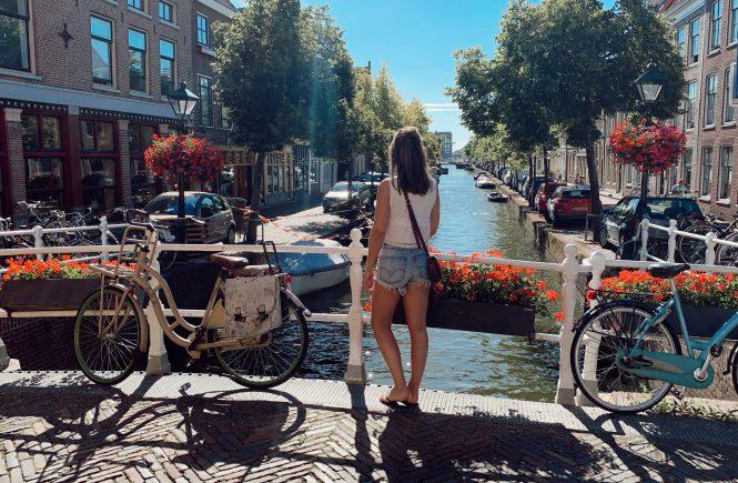 Stedentrip Alkmaar